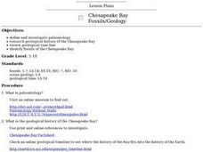 Chesapeake Bay Fossils/Geology Lesson Plan