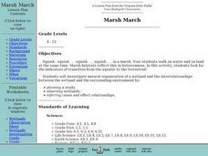 Marsh March Lesson Plan