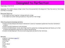 Designed to Perfection Lesson Plan