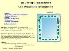 2D Concept Visualization:  Cell Organelles Presentation Lesson Plan