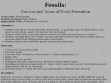 Fossils: Process and Types of Fossil Formation Lesson Plan