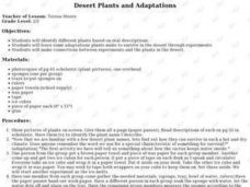 Desert Plants and Adaptations Lesson Plan