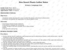 How Desert Plants Gather Water Lesson Plan