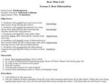 Bear Hibernation Lesson Plan