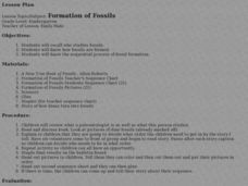 Formation of Fossils Lesson Plan