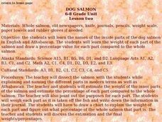 Dog Salmon Lesson Two Lesson Plan