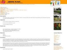 Fence Mural Lesson Plan