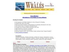 Gray Whales:   Hitchhikers: Free Rides on Gray Whales Lesson Plan