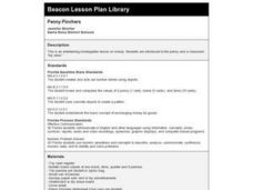 Penny Pinchers Lesson Plan
