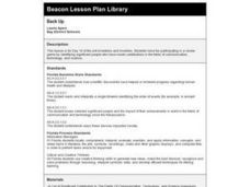 Back Up Lesson Plan
