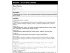 Expert Review Lesson Plan