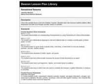 Sensational Seasons Lesson Plan