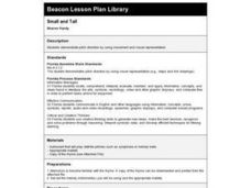 Small and Tall Lesson Plan