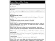 Peer Power Partners Lesson Plan