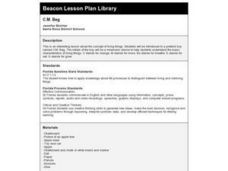 C.M. Beg Lesson Plan