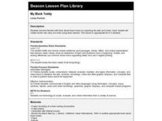 My Black Teddy Lesson Plan