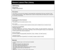 Cell Factory Lesson Plan