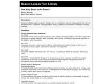How Many Bears in the Forest? Lesson Plan