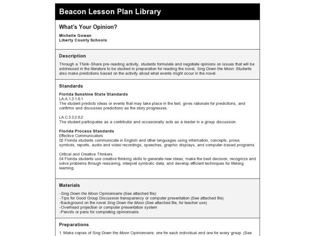 What's Your Opinion Lesson Plan
