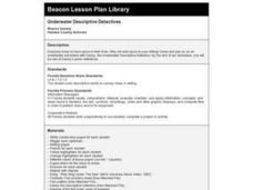 Underwater Descriptive Detectives Lesson Plan