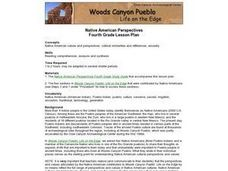 Native American Perspectives Lesson Plan