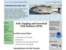 Fish Tagging and Essential Fish Habitat Lesson Plan