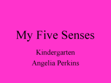 My Five Senses Lesson Plan