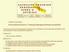 Tracking Endangered Animals by Satellite Lesson Plan