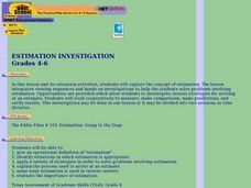 Estimation Investigation Lesson Plan