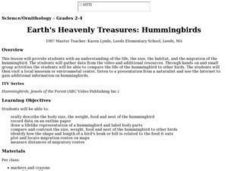 Earth's Heavenly Treasures: Hummingbirds Lesson Plan
