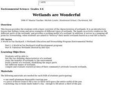 Wetlands Are Wonderful Lesson Plan