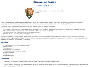 Discovering Fossils Lesson Plan