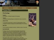Science: Fire Ecology Lesson Plan