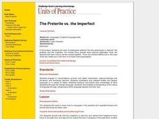 The Preterite vs. the Imperfect Lesson Plan