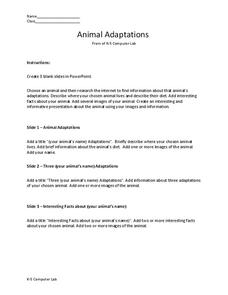 Animal Adaptations Worksheet