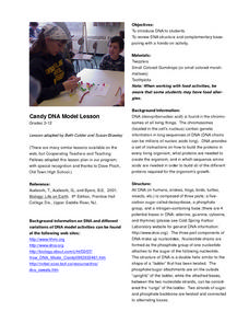 Candy DNA Model Lesson Lesson Plan