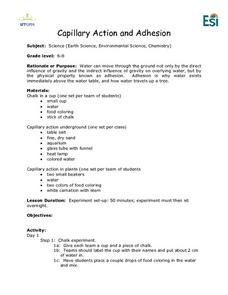 Capillary Action and Adhesion Lesson Plan
