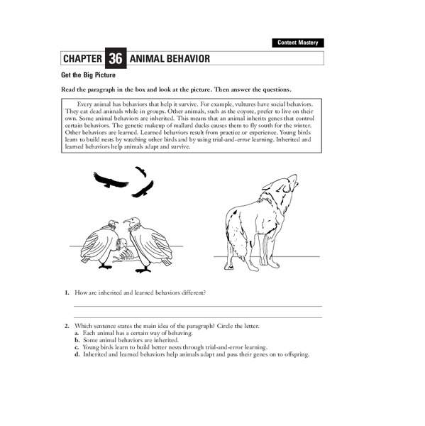 animal behavior worksheet for 7th 12th grade lesson planet. Black Bedroom Furniture Sets. Home Design Ideas