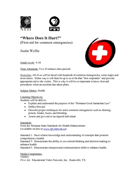 """Where Does It Hurt?"" (First-aid for Common Emergencies) Lesson Plan"