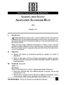 Learning From Leaves:  Adaptation Scavenger Hunt Lesson Plan