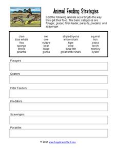 Animal Feeding Strategies Worksheet