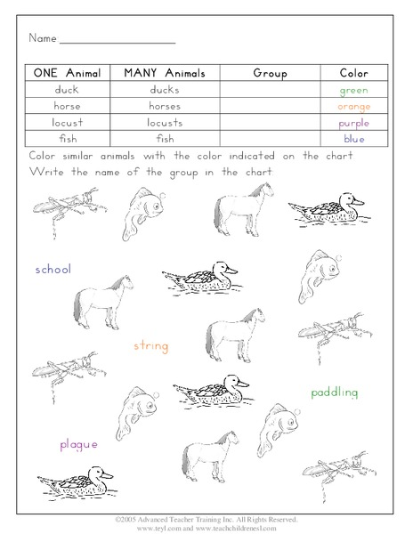 Animal Groups Worksheet for 3rd - 5th Grade | Lesson Planet