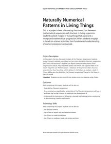 Naturally Numerical Patterns in Living Things Lesson Plan
