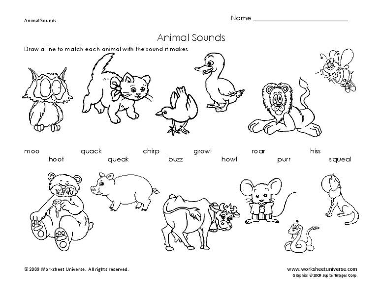 animal sounds worksheet for pre k 1st grade lesson planet. Black Bedroom Furniture Sets. Home Design Ideas