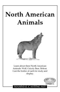 North American Animals Lesson Plan