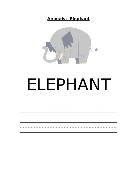 Animals: Elephant Worksheet