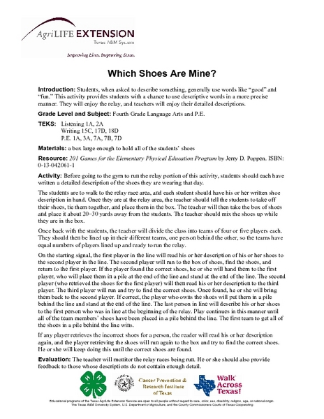 Which Shoes Are Mine? Lesson Plan