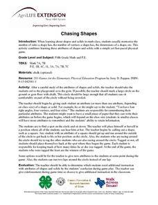 Chasing Shapes Lesson Plan