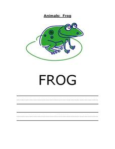 Animals: Frog Worksheet