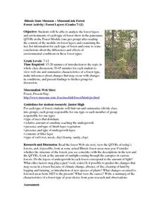 Forest Activity: Forest Layers Lesson Plan